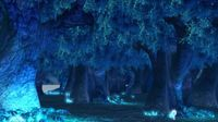 Forest Night view Sence 3D Model
