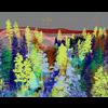 15 42 20 137 forest sence 2 3 4