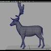 16 01 08 369 deer 4 4