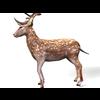 16 01 09 148 deer 3 4