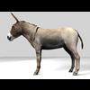 16 01 14 585 donkey 2 4