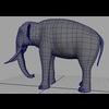 16 01 19 223 elephant 4 4