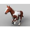 16 01 33 40 horse 3 4