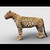 16 01 37 995 leopard 1 4