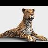 16 01 38 486 leopard 2 4
