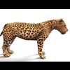 16 01 38 831 leopard 3 4