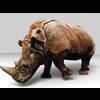 16 01 47 866 rhino 5 4