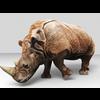 16 01 48 359 rhino 6 4