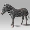 16 02 01 271 zebra 2 4