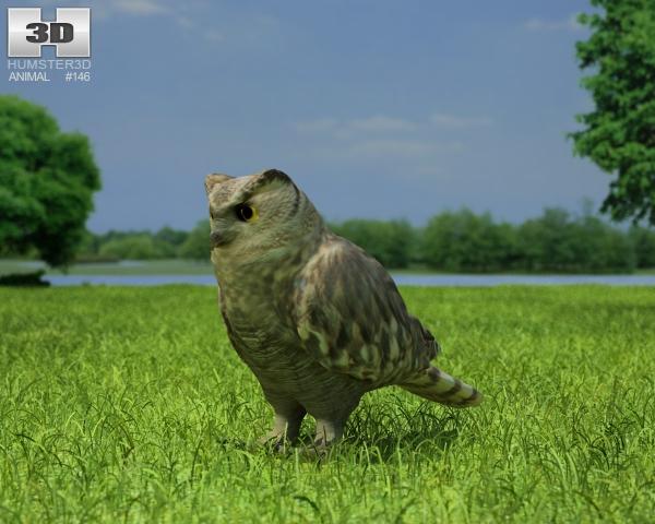 Eurasian Eagle-Owl (Bubo Bubo) 3D Model