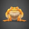 16 43 59 725 fantasy toon toad 02 4