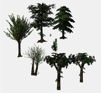 Tree Collection: Use For Your Scenes 3D Model
