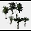 16 56 25 240 tree promo 1 4