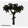 16 56 25 518 tree promo 2 4