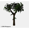 16 56 25 726 tree promo 3 4