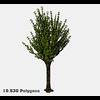 16 56 25 941 tree promo 4 4