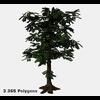 16 56 26 757 tree promo 7 4