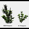 16 56 27 409 tree promo 8 4
