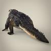 16 59 40 77 realistic crocodile 05 4