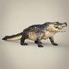 16 59 40 935 realistic crocodile 07 4