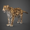 16 59 43 341 low poly cheetah 01 4