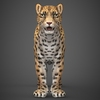 16 59 44 156 low poly cheetah 03 4