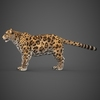 16 59 44 534 low poly cheetah 04 4