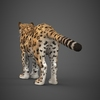 16 59 44 793 low poly cheetah 05 4