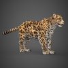 16 59 45 496 low poly cheetah 07 4