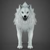 17 02 11 871 white wolf 03 4