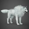 17 02 13 299 white wolf 07 4