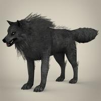 Black Wolf 3D Model