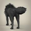 17 02 18 982 black wolf 05 4