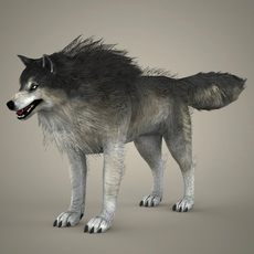 Brown Wolf 3D Model