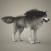 17 02 23 729 brown wolf 07 4