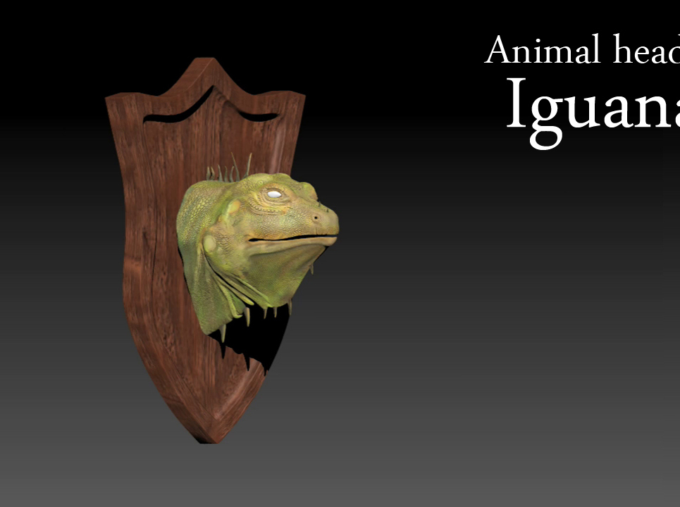Iguana show