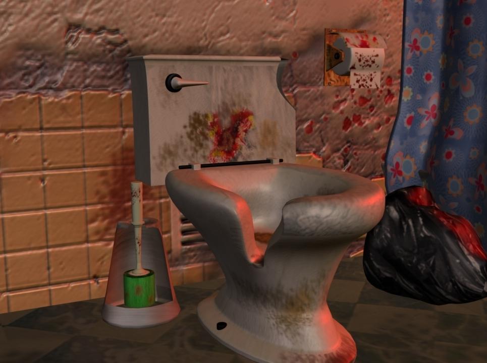 Toilet set show