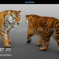 3d tiger animal character modeling cover