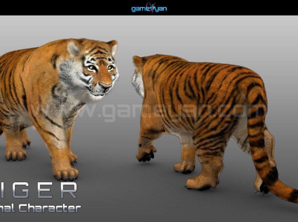 3d tiger animal character modeling show