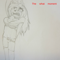 The what moment cover