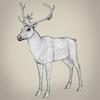13 20 21 643 realistic reindeer 09 4