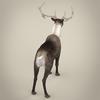 13 20 25 693 realistic reindeer 06 4
