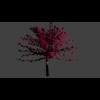 13 43 53 232 tree5 4