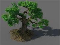 Banyan Tee 02 3D Model