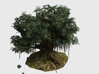 Banyan Tee 03 3D Model