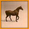14 56 54 794 horse ani 0020 4