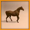14 56 55 477 horse ani 0019 4
