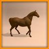 14 56 55 697 horse ani 0018 4