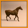 14 56 56 261 horse ani 0016 4