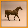 14 56 59 198 horse ani 0011 4